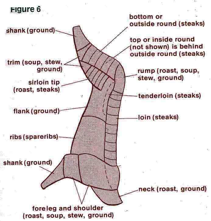 deer charts rh askthemeatman com deer butcher diagram deer butchering chart free